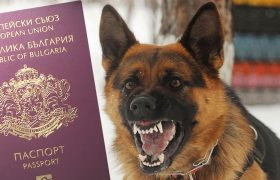 Bulgarian passport guarded